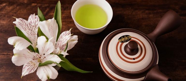 Ocha – здравословно японско презареждане